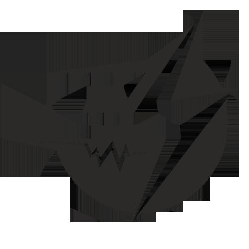 ElectroSpeed